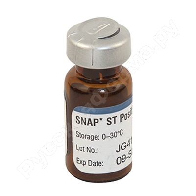 Положительный контроль Стрептомицин